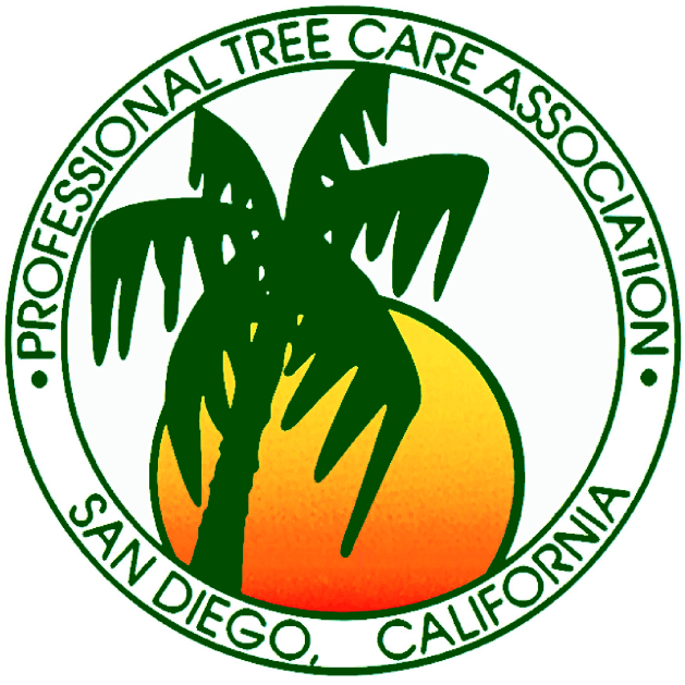 consulting arborist for tree healthcare in Irvine